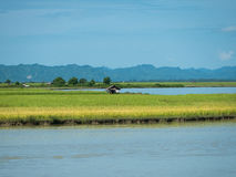 The Kaladan River in Myanmar Royalty Free Stock Photos