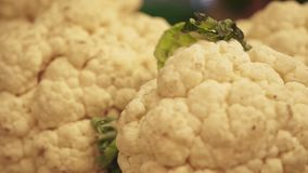 Kalafior, w górę odpierających zdrowych warzyw na zbiory