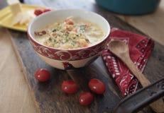 Kalafiorowa gęsta zupa rybna Zdjęcia Stock