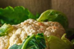 Kalafiorowy zakończenie warzywa wciąż życie pojęcie zdrowy łasowanie zdjęcie royalty free