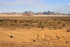 Kalahari öken Arkivfoto