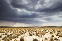 Kalahari cloudscape. Rain clouds in the Kalahari desert Stock Photo