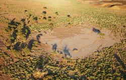 Kalahari desert. Bird's-eye view Namibia royalty free stock photos