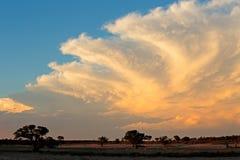 Kalahari desert cloudscape Royalty Free Stock Images
