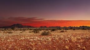 Kalahari Desert, Namibia. Colorful sunset in Kalahari Desert, Namibia royalty free stock photography