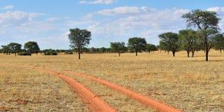 The Kalahari desert, Namibia Stock Images