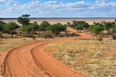 Kalahari pustynia, Namibia Zdjęcia Stock