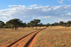 Kalahari pustynia, Namibia Zdjęcia Royalty Free