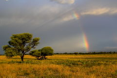 Kalahari-Sonnenuntergang und Regenbogen Lizenzfreie Stockbilder