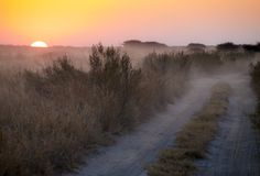 Kalahari Sunrise Royalty Free Stock Photos