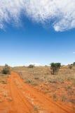 Kalahari trail. Sandy trail with tire tracks in the red sand of the Kalahari desert, Kagalagadi Transfrontier Park, South Africa Royalty Free Stock Photos