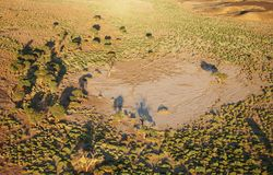 Kalahari-Wüste Lizenzfreie Stockfotos