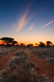 Kalahati sunset with trees grass and blue sky Royalty Free Stock Images