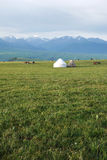 Kalajun grassland with yurts Stock Images