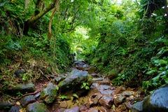 Kalalau足迹在考艾岛,夏威夷 免版税库存图片