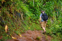Kalalau足迹的年轻远足者在考艾岛 免版税库存图片