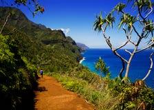 Kalalau足迹,考艾岛 库存图片