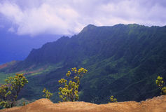Kalalau Lookout, Kauai Royalty Free Stock Photography