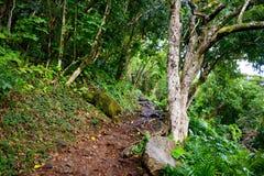 Kalalau trail in Kauai, Hawaii Stock Photography