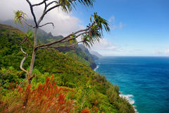 Kalalau trail in Kauai, Hawaii Royalty Free Stock Image
