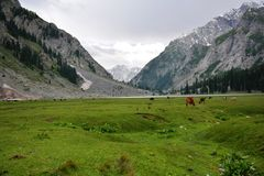 Kalam Pakistan del lago Mohdand Fotografia Stock Libera da Diritti