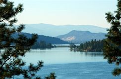 View of lake bracketed by Ponderosa pine. A view of Kalamalka Lake looking south in Okanagan Valley with trees in foreground and mountains fading into distance Stock Photography