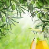 Kalamata olives, bokeh light, green leaves and olive oil jar. Summer green background with copy space stock photography
