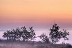 kalamazoo River Valley рассвета Стоковое Изображение RF
