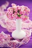 Kalanchoe flowers Stock Image