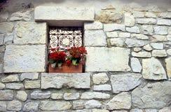 Kalanchoe Window Box Royalty Free Stock Photography