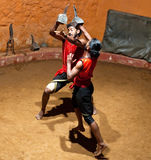Kalaripayattu Martial Art in Kerala, South India Stock Photography