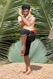 Kalarippayat, indian ancient martial art of Kerala. India royalty free stock images