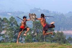 Kalarippayattu武术在喀拉拉,印度 库存照片