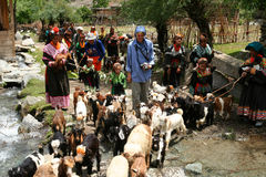 Kalasha people Stock Photography