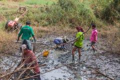KALASIN, ТАИЛАНД - 16-ОЕ ДЕКАБРЯ: Рыбная ловля агронома в малом cana Стоковые Фотографии RF