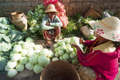 Kalaw marknad, Myanmar Royaltyfria Foton