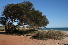 Kalbarri Beach Royalty Free Stock Photos
