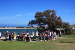 Kalbarri - het Australische Voeden van de Pelikaan Royalty-vrije Stock Foto's
