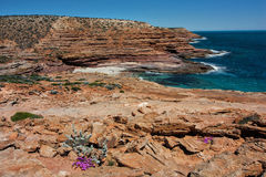 Kalbarri klippor Arkivbilder