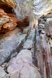 The narrow river trail. Kalbarri National Park. Western Australia. Australia. Kalbarri National Park is located 485 km km north of Perth, in the Mid West region royalty free stock photography