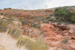 Kalbarri Riverbank: Coastal Sandstone royalty free stock images