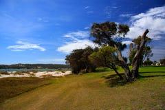 Kalbarri Western Australia. The foreshore and beach at Kalbarri in Western Australia stock photos