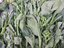 Kale για την πώληση Στοκ φωτογραφία με δικαίωμα ελεύθερης χρήσης