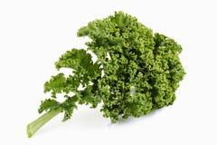 Kale που απομονώνεται στο λευκό Στοκ εικόνα με δικαίωμα ελεύθερης χρήσης