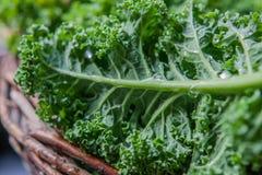 Kale στο αγροτικό καλάθι στενό σε επάνω φωτός της ημέρας Στοκ Εικόνες