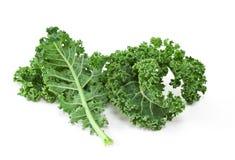 Kale. Fresh curly kale on white background royalty free stock photos