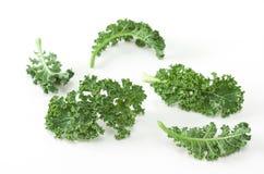 Kale. Fresh curly kale on white background stock photo