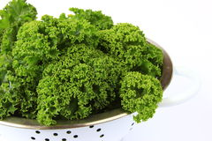 Kale. Fresh kale, preparing for cooking Royalty Free Stock Images