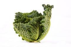 Kale Стоковое Фото