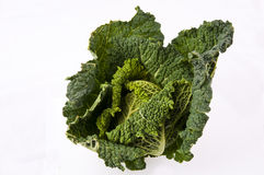 Kale. Fresh kale isolated on a white background Royalty Free Stock Photography